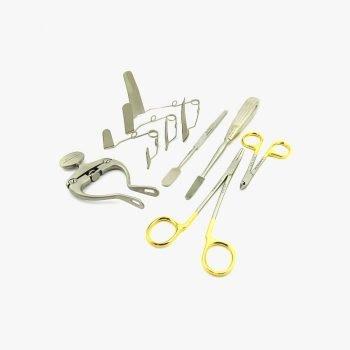 Kit Dental Conejo Roedor