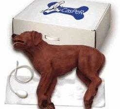 Simulador RCP Canino