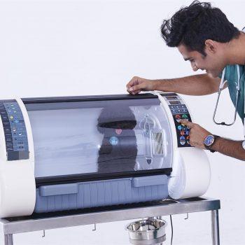 Incubadora Veterinaria Portátil Aeolux