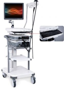 Endoscopio Gastroscopio Flexible Vaterinario