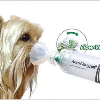 AeroDawg: Cámara Inhaladora para perros